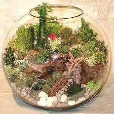500 best terrarium images on pinterest terraria vase and terrariums
