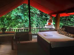 gallene gala nature resort kitulgala sri lanka booking com