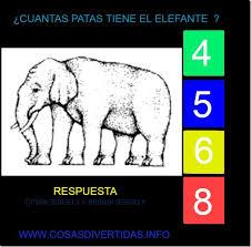 imagenes mentales para facebook desafios para facebook cuantas patas tiene este elefante el blog