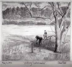 beautiful scenery of nature draw by pencil sketch of nature beauty
