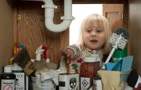 Toxicity Of Household Products by Poisonous Household Products