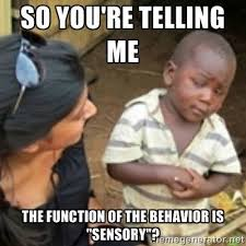 Intervention Meme - learn what causes meltdowns in kids w autism in my book penina