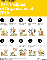 the 10 principles of organizational dna