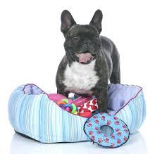 Cedar Dog Bed Dog Bedsding For Crate Washable Orthopedic Dog Beds