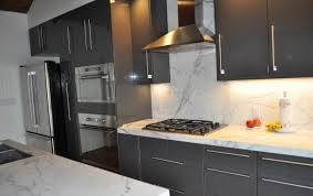 Kitchen Cabinet Stainless Steel Black Kitchen Cabinets With Stainless Steel Appliances Home