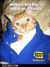 Best Buy Memes - workin at best buy cat meme cat planet cat planet