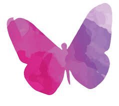 colourful butterfly silhouette wall sticker canvas rocks