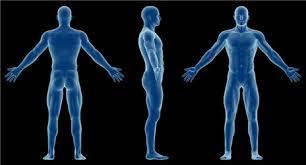 Anatomy And Physiology Midterm Exam Anatomy U0026 Physiology U2013 Distance Learning Systems Inc