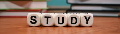 Lebenslauf Vorlage Tum Tum Som Fachschaft Tum School Of Management