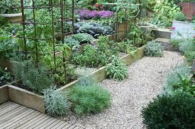 kitchen gardening ideas getting a small kitchen garden started the micro gardener