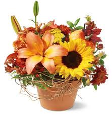 halloween flowers u2013 burwell floral u0026 bridal loft