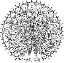 detailed butterfly coloring pages for adults detailed coloring pages elegant detailed butterfly coloring pages