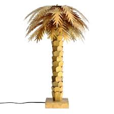 palm tree from palm fronds to fir trees myths and