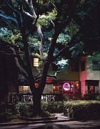 Tree Lights Landscape 107 Best Landscape Lighting Images On Pinterest Backyard Ideas