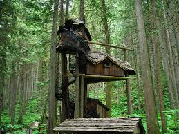 Amazing Tree Houses by Houses In Trees Cesio Us