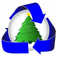 christmas trees recycling christmas lights decoration