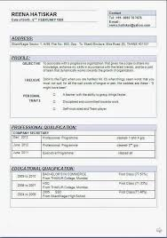 Best Looking Resume Format by Best 25 Career Objectives For Resume Ideas On Pinterest Career