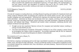 It Manager Sample Resume by Bass Fishing Resume Reentrycorps