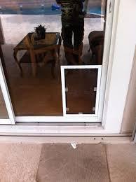 Exterior Cat Door Lowes Pet Door For Screen Exterior With Built In Sliding Glass