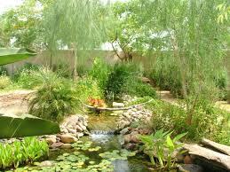 the pond gnome phoenix pond blog