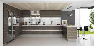 oak rta modern kitchen cabinets