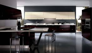 Modern Dark Kitchen Cabinets Kitchen Beautiful Italian Kitchen Design Ideas Modern Glossy