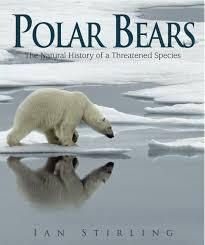 exploring the natural history of polar bears u2013 national geographic