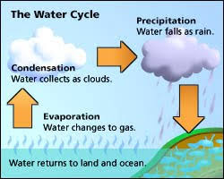 the water cycle ps159 science