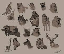 52 best dibujos images on 52 best dibujos animales images on pinterest draw animals and