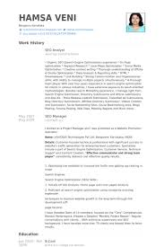 Sample Business Analyst Resume by 123 Essay Help Me Video Dailymotion Cv Sample For Business