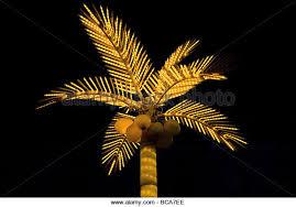 artificial palm tree stock photos artificial palm tree stock