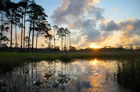 Florida lakes images Florida 2012 coastal dune lakes jpg