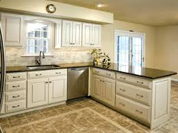 How Much Do Custom Kitchen Cabinets Cost Adorable Ikea Kitchen Cabinets Cost Monsoonvt How Much For New