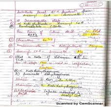 mds class prepare notesgen