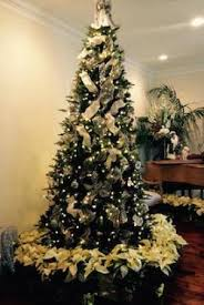 decorated fraser fir trees