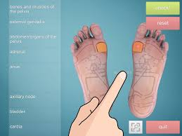 Foot Reflexology Map Drag U0026drop Reflexology Foot Android Apps On Google Play