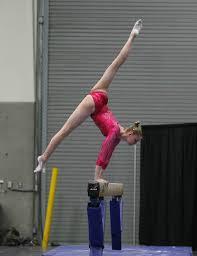 Desert Lights Gymnastics Level 10 National Rankings Heading Into J O Nationals Flogymnastics