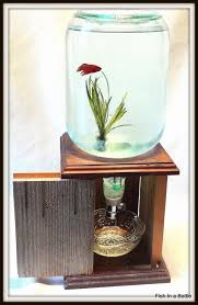 a fishtank that doesn t look like the dentist s office fish