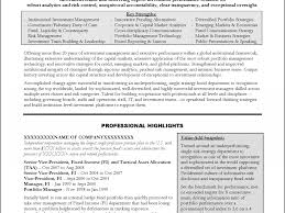 Risk Management Resume Samples by Download Banking Executive Sample Resume Haadyaooverbayresort Com