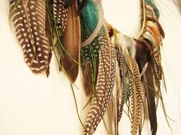 3 hang your feathers on your wall in a fancy garland cruelty