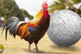 2017 year of the rooster guide to the lunar coins agaunews