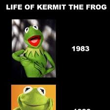 Kermit The Frog Meme - life of kermit the frog by lamey70 meme center