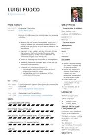 sle cv for document controller financial controller resume exle cv templates pinterest