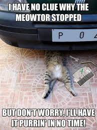 Working Cat Meme - cat working under car meme the news wheel