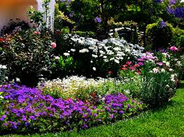 flower garden designs for front of house flowers in plus design