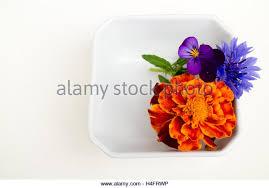edible flower arrangements edible flower arrangements stock photos edible flower
