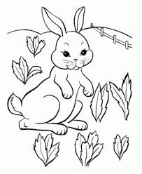 get this ocean coloring pages for preschoolers 9yhkl