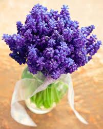 good cut flowers to grow u2013 thin blog
