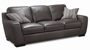 To Clean Leather Sofa How To Clean Leather Furniture Beautiful Alpha Leather Sofa By