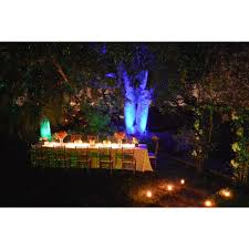 Firefly Laser Outdoor Lights by Blisslights Spright Black Indoor Outdoor Firefly Laser Light Spr
